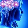 Kurz osobního rozvoje Posilovna mysli